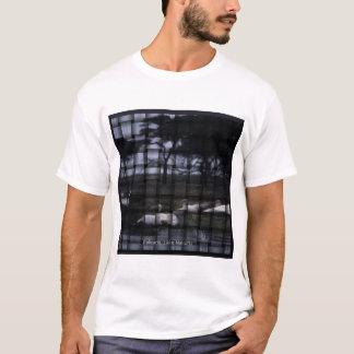 amboseli pelicans T-Shirt
