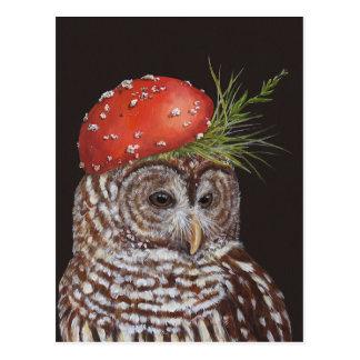 amelie the barred owl postcard