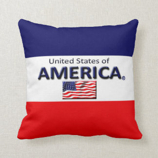 America Decorative Designer Throw or Lumbar Pillow