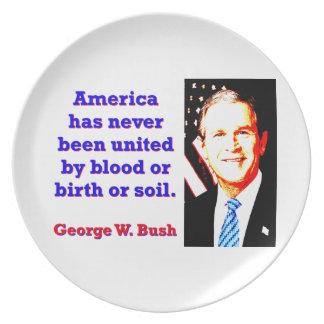 America Has Never - G W Bush Plate