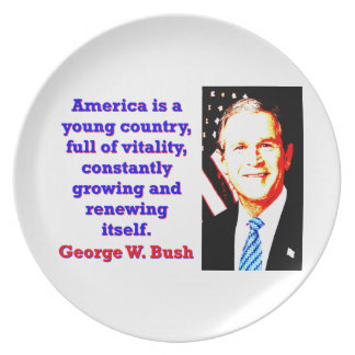 America Is A Young Country - G W Bush Plate