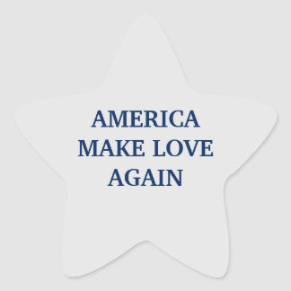 AMERICA MAKE LOVE AGAIN  ™ STAR STICKER