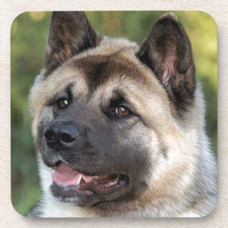 American Akita Dog Coaster