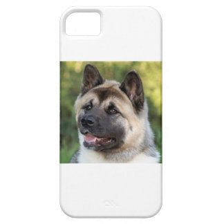 American Akita Dog iPhone 5 Cases
