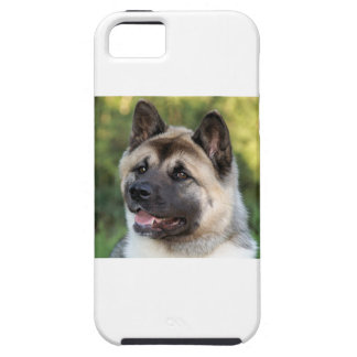 American Akita Dog iPhone 5 Covers