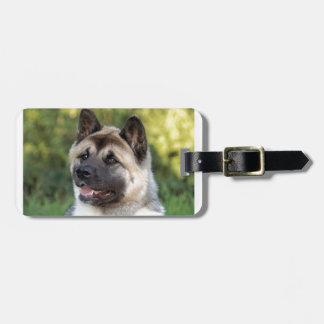 American Akita Dog Luggage Tag