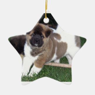 American Akita Puppy Dog Ceramic Star Decoration