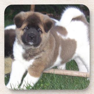 American Akita Puppy Dog Coaster