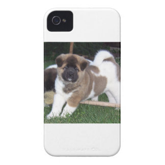 American Akita Puppy Dog iPhone 4 Case-Mate Cases