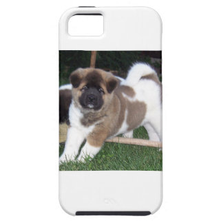 American Akita Puppy Dog iPhone 5 Case