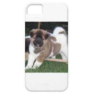 American Akita Puppy Dog iPhone 5 Cases