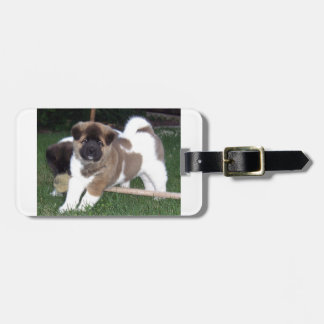 American Akita Puppy Dog Luggage Tag