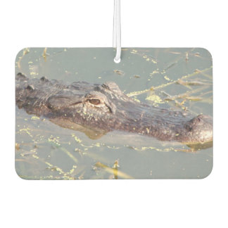American Alligator Air Freshner Car Air Freshener