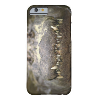 American alligator barely there iPhone 6 case
