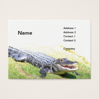 american alligator business card