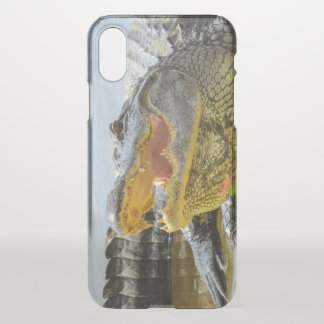 American Alligator. Face to Face iPhone X Case
