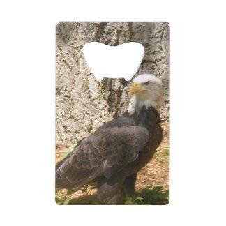 American Bald Eagle Bottle Opener