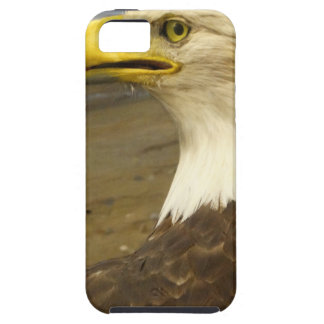 American Bald Eagle Case For The iPhone 5