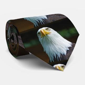American Bald Eagle Head Tie