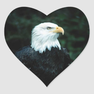 American Bald Eagle Heart Sticker