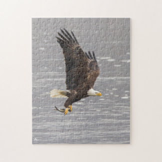 American Bald Eagle Jigsaw Puzzle