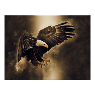 American Bald Eagle Let Freedom Soar Poster