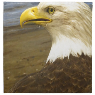 American Bald Eagle Napkin