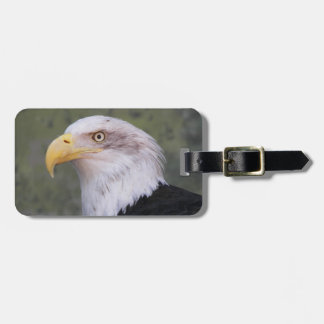 American Bald Eagle Photo Luggage Tag
