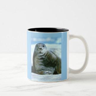 American Bearded Seal Two-Tone Coffee Mug