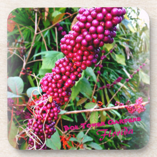 American Beautyberry at Bok Tower Gardens Florida Coaster