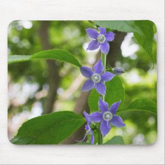 American Bellflower 3 Purple Wildflowers Mousepad