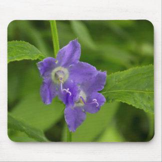 American Bellflower Purple Wildflower Mousepad