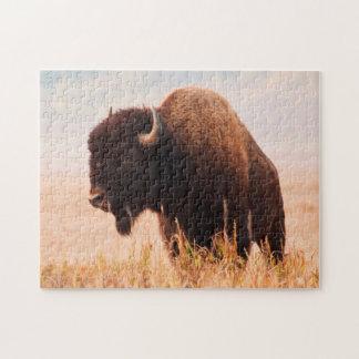 American Bison (Bison Bison) Herd In Teton 2 Jigsaw Puzzle