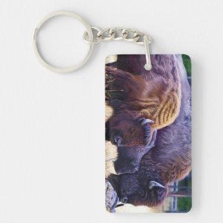 American Bison Family Key Ring