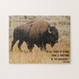 American Bison Grazing In Meadow Grass Photograph Jigsaw Puzzle