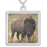 American Bison Necklace