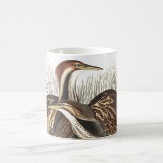 American Bittern Birds Wildlife Animals Mug