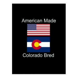 """American Born..Colorado Bred"" Flag Design Postcard"