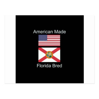 """American Born..Florida Bred"" Flags and Patriotism Postcard"