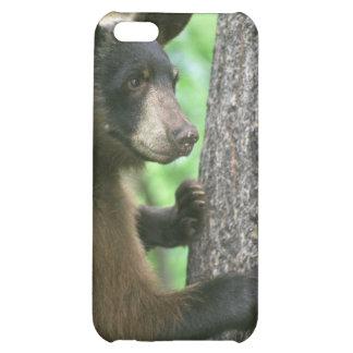 American Brown Bear iPhone 5C Cover
