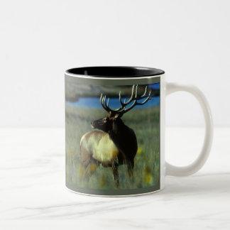 American Bull Elk Two-Tone Mug