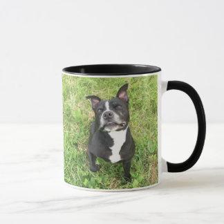 American Bull Terrior Mug