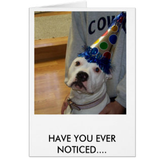 american bulldog birthday card
