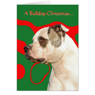 American Bulldog Card