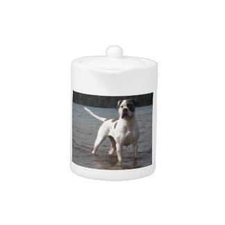 American Bulldog Dog In The Water