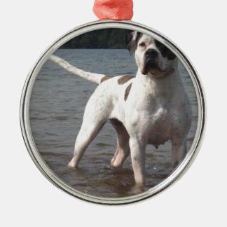 American Bulldog Dog In The Water Metal Ornament