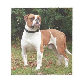 American Bulldog Dog Notepad