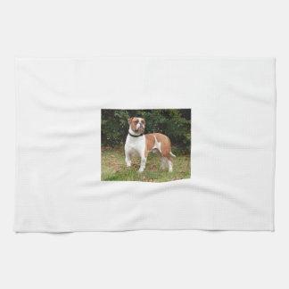 American Bulldog Dog Tea Towel