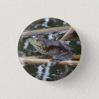 American Bullfrog 3 Cm Round Badge