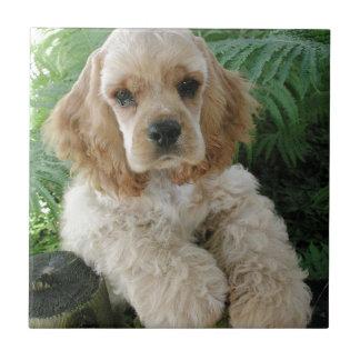 American Cocker Spaniel Dog And The Green Fern Ceramic Tile